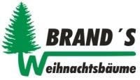 Weihnachtsbaumverkauf Heinrich Brand