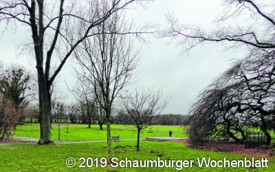 Mehr Grün in den Volkspark bringen