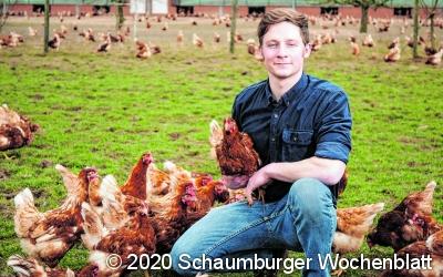 Engpässe im deutschen Eiermarkt