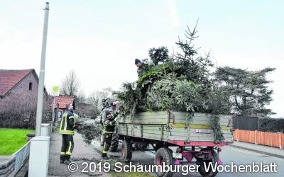 Feuerwehren sammeln  heute Tannenbäume ein